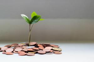 Estudo: líderes empresariais não esperam que a economia recupere até 2022